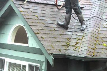Roof & Gutter Maintenance